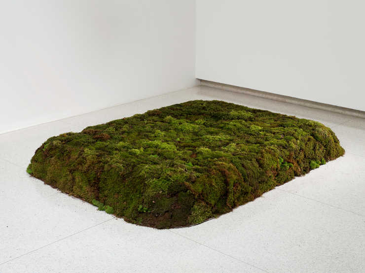 A conceptual work in which 20 cubic yards of peat moss are formed to the dimension of the work,...