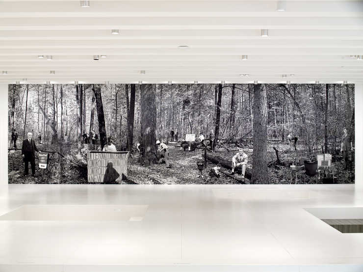 "A manipulated photograph of the ""Lost Forty"" Chippewa National Forest in Minnesota..."