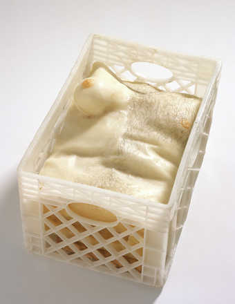 A wax torso, half male and half female, contained within a cast plastic milk crate.