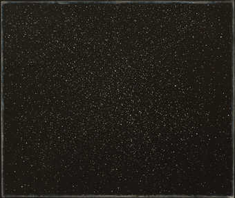 Blackfield with small white dots like stars in the night sky