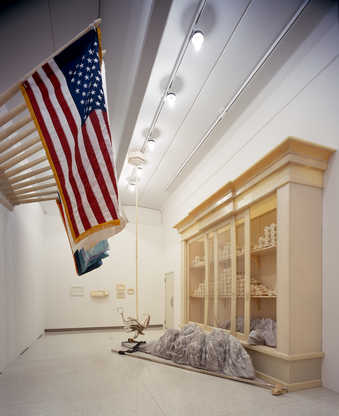 The exhibition as installed at Walker art center including bleacher, carpet, wall pad ensemble,...