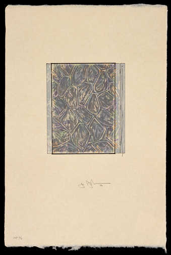 A patterned print with similarities to Cicada  and a profile image of a catenary painting, over...